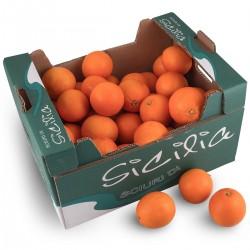 Oranges petites