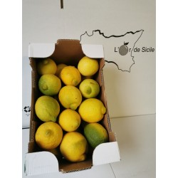 Citrons (Plus disponible)