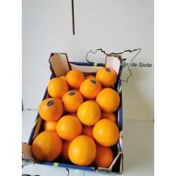 Oranges Grandes (plus dispo)